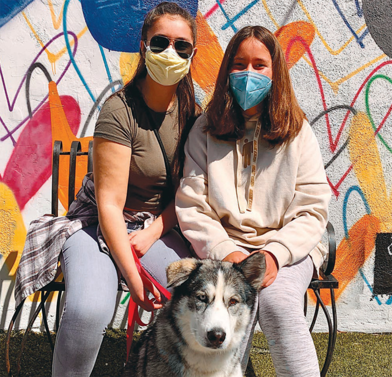 Thousands of Shelter Pets Find Homes Amidst COVID-19 Pandemic