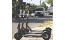 Bird Sues Beverly Hills Over Scooter Ban