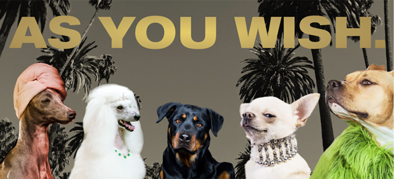"Beverly Hills Launches Pet-Friendly ""As You Wish"" Campaign"